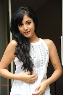 Priya Banerjee Pictures at Kiss Movie Teaser Trailer Launch Event  0020.jpg