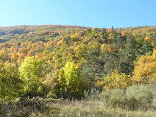Le Diois en automne