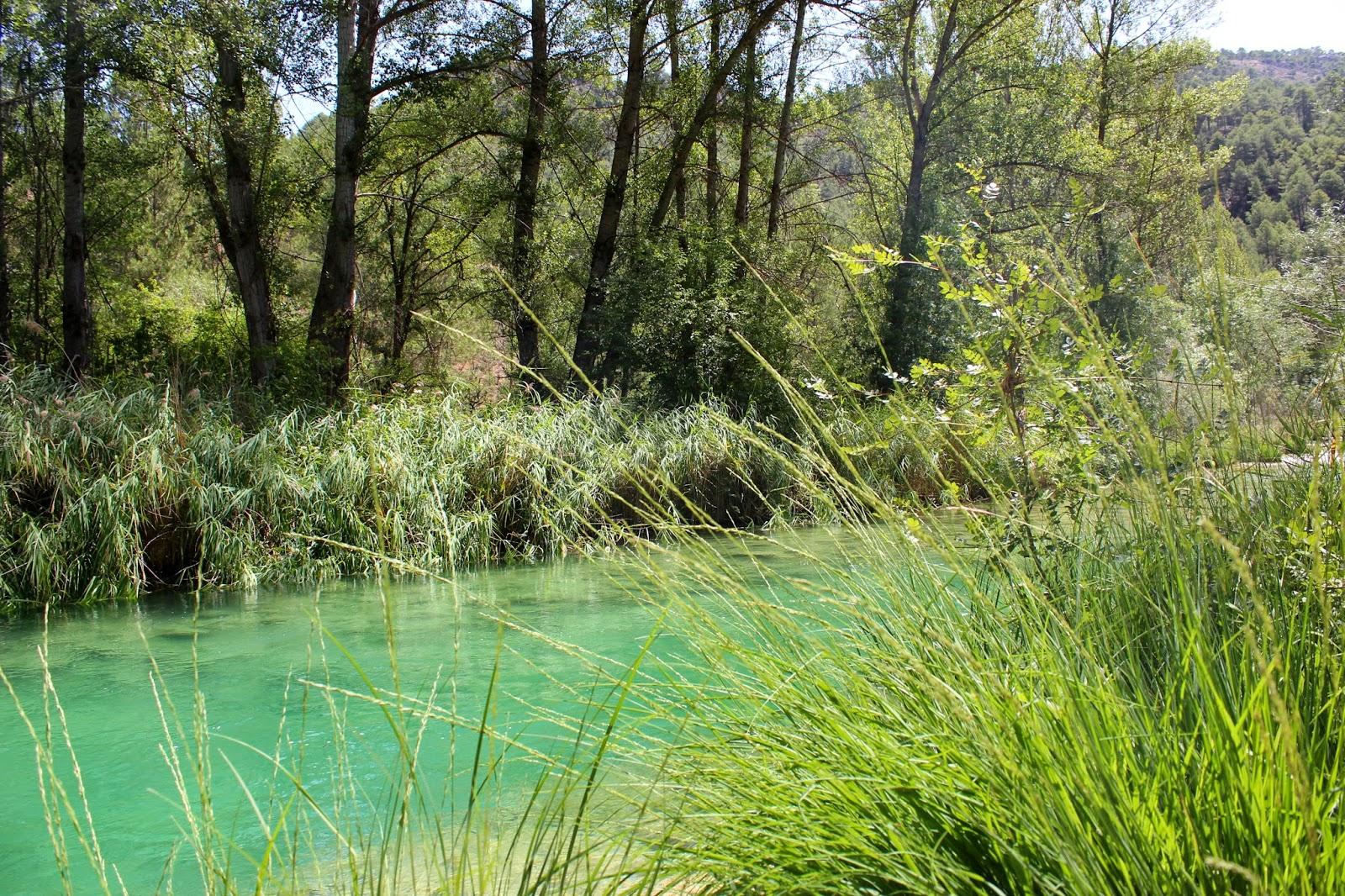 Río Tajo en el Parque Natural del Alto Tajo