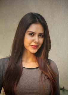 Actress Sonam Bajwa Picture Gallery at Kappal Press Meet  2B4.jpg