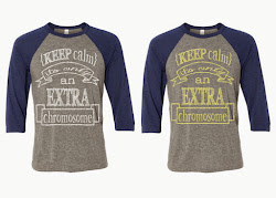 Keep Calm Grey/Navy Triblend Raglan (Yellow Ink)