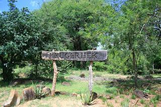 Geschiedenis van het Krugerpark - President Paul Kruger had in 1898 de vooruitziende blik om het Sabie Wildreservaat in leven te roepen.
