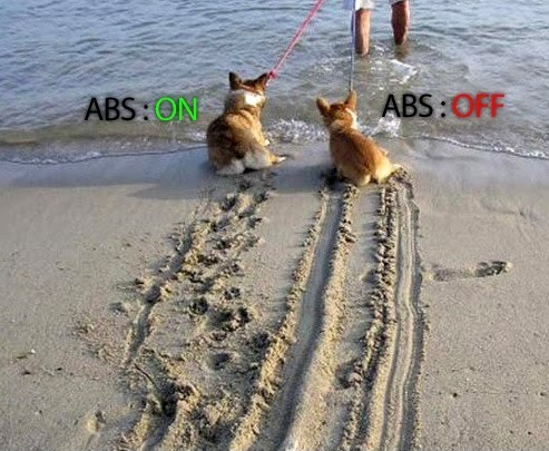 ABS Brakes vs ABS Breaks