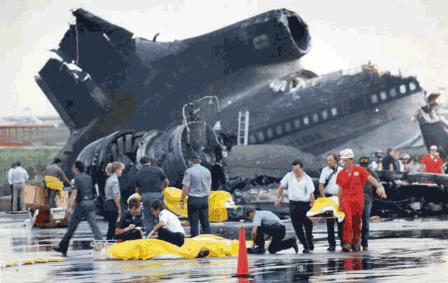 Bangkai pesawat 191 Delta Airlines