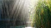 #2 Rain Wallpaper