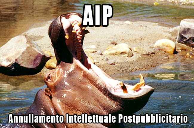 HIPPO HYPE
