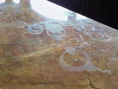 Granite Shield Permanent Lifetime Sealer Understanding