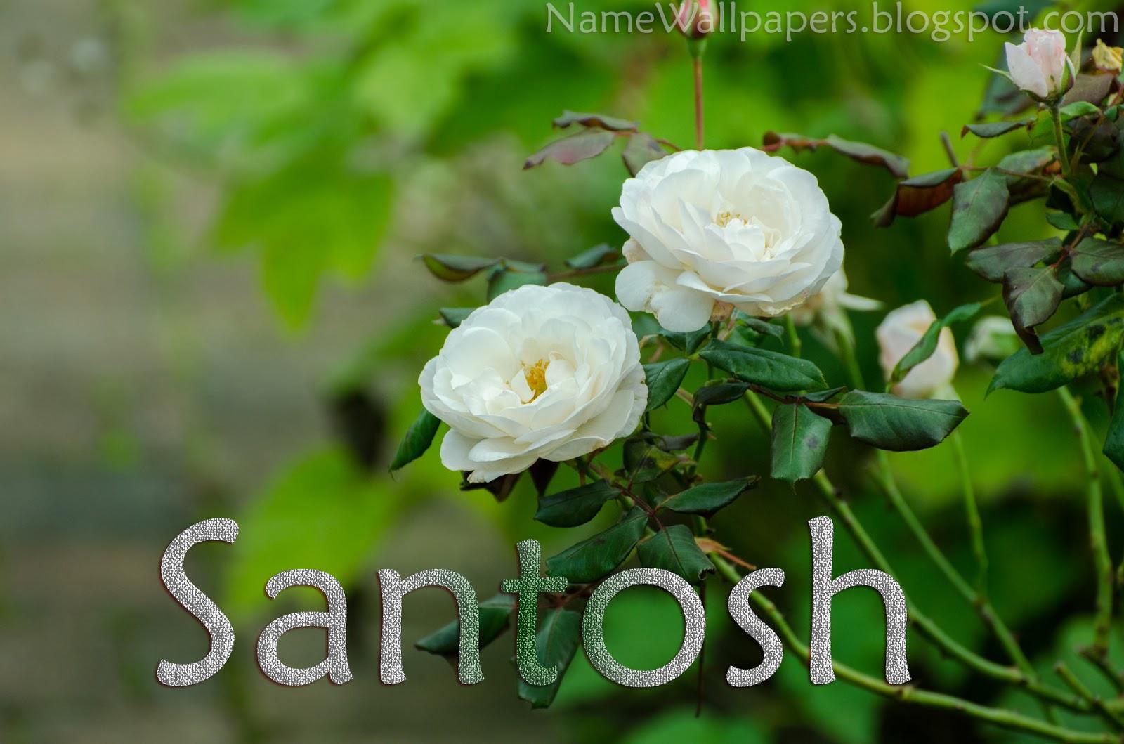 Wallpaper Hd Online Santosh Name Wallpapers