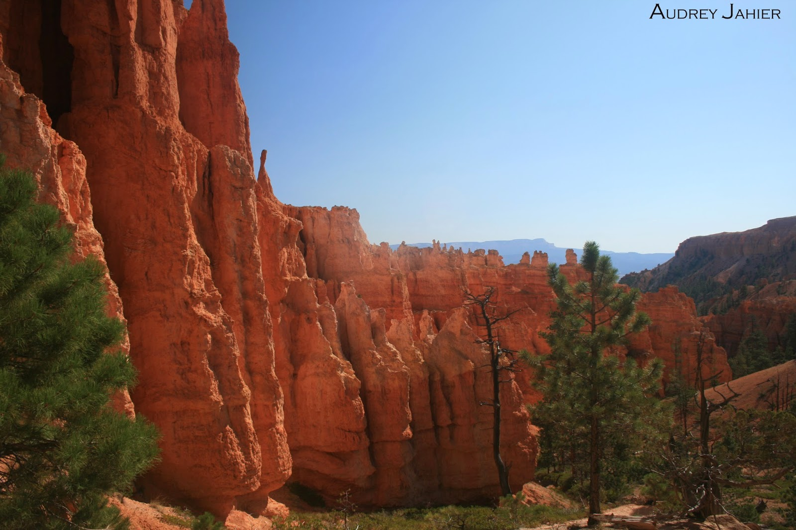 bryce-canyon-randonnee-Road-trip-USA