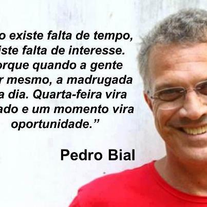 Frases De Amor Jogadas Ao Vento Frases De Pedro Bial