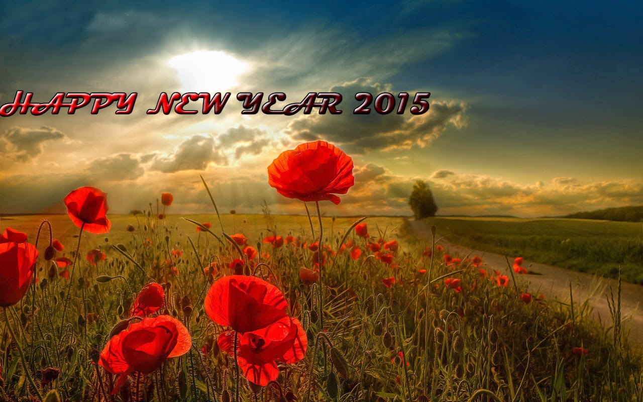 Latest Beautiful Happy New Year 2015 Pictures – Download Wallpapers