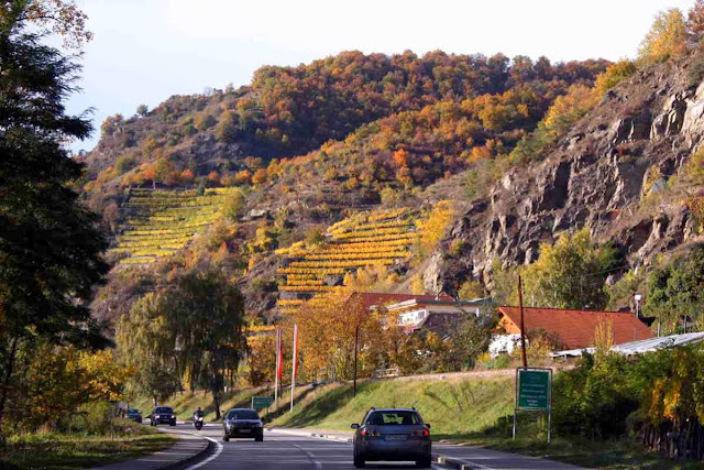 Weinberge der Wachau im Herbst © Copyright Monika Fuchs, TravelWorldOnline