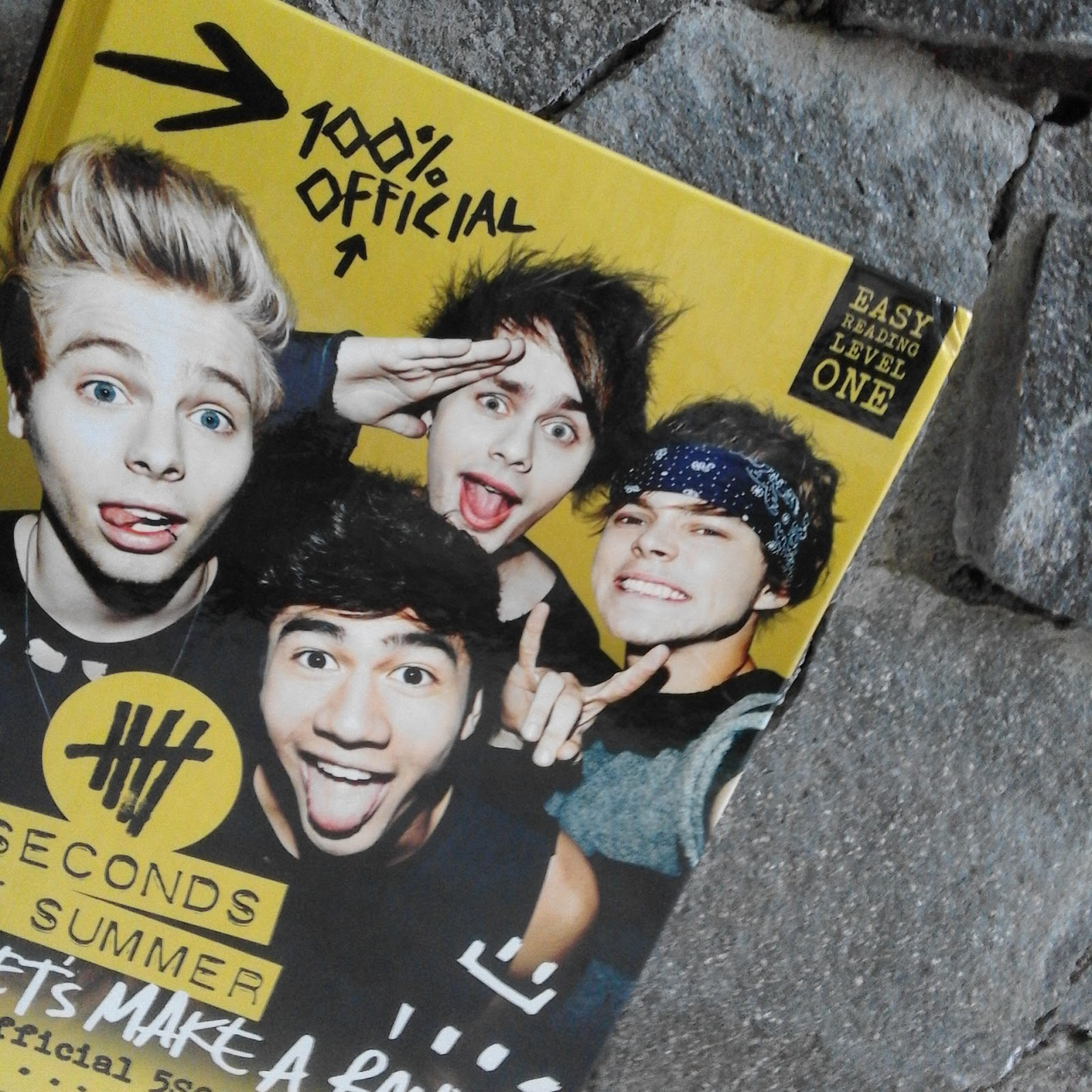 5sos official book hey let s make a band