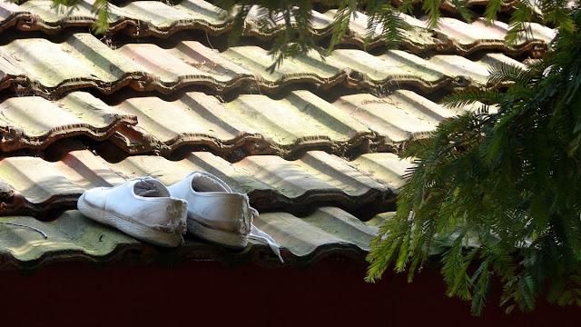 Мамасан допрыгался по крышам