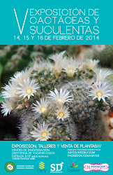 Yucatan 2014