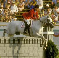 Abdullah horse
