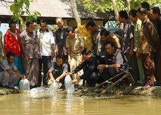 Bupati Serahkan Paket Bibit  Ikan Lele Senilai Rp700 juta