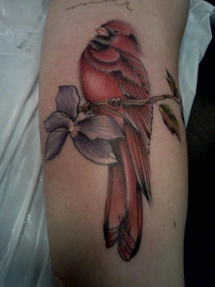 kim wells tattooer cardinal tattoo