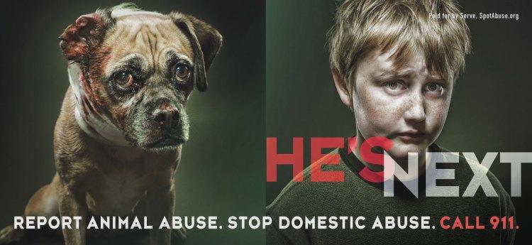 Animal abuse essay