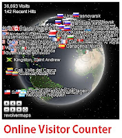 Live visitor counter revolvermap