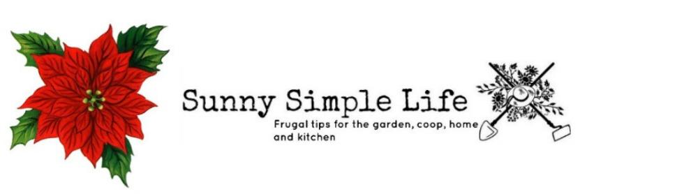 Sunny Simple Life