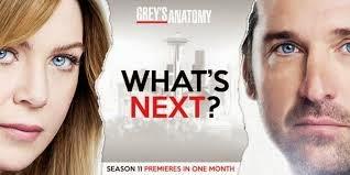 Assistir Grey's Anatomy Dublado 11 Temporada Online