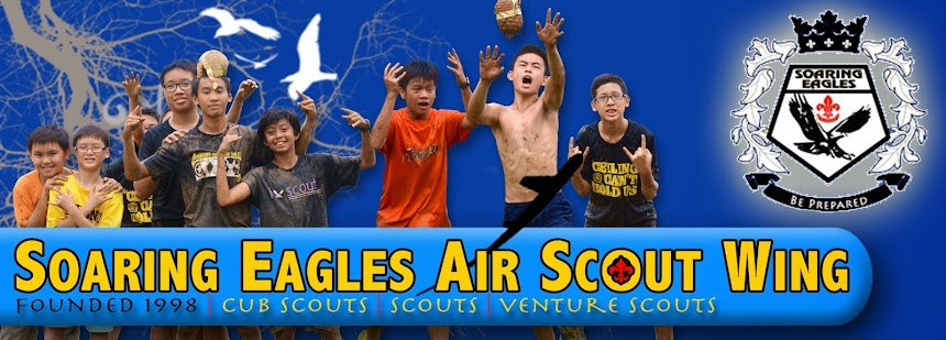 SOARING EAGLES AIR SCOUT WING