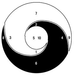 Hình 2: Âm Dương vận động