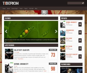Tiberion WordPress Theme
