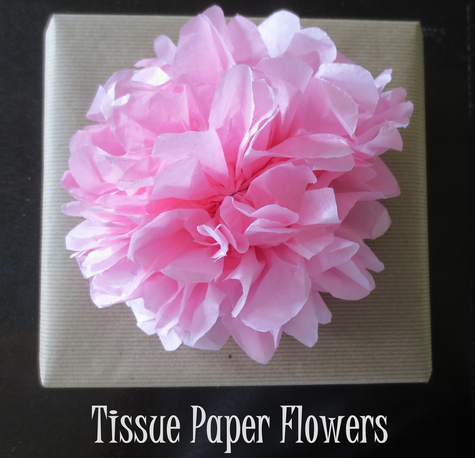 The Owl With The Goblet Tissue Paper Flower