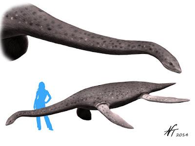 Eromangasaurus