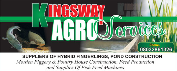 KINGSWAY AGRO SERVICES