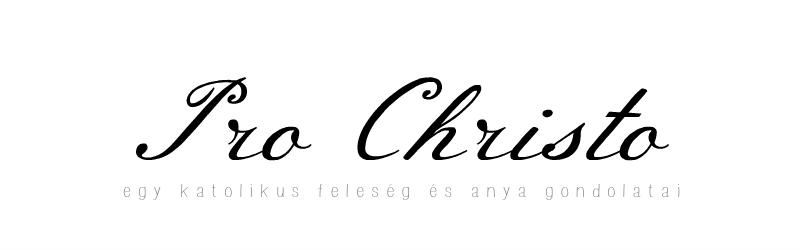 PRO CHRISTO – egy katolikus feleség és anya gondolatai