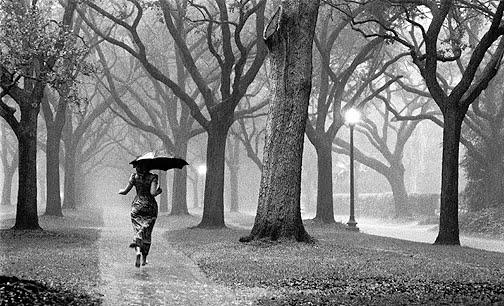 rintikan hujan kebahagiaan