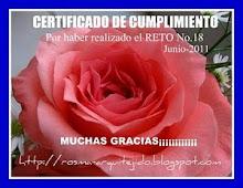 Certificado # 18