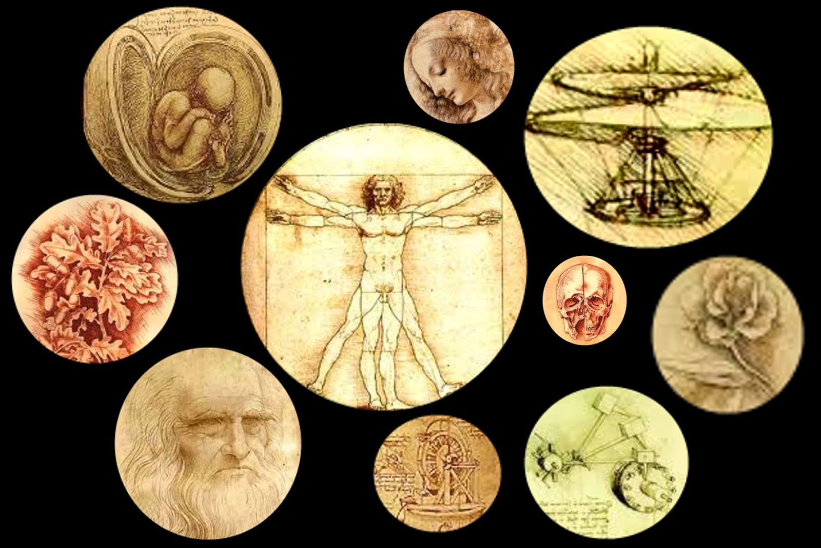 Enlace al post '¿Sería Leonardo da Vinci un buen candidato según las pautas actuales de los reclutadores?'