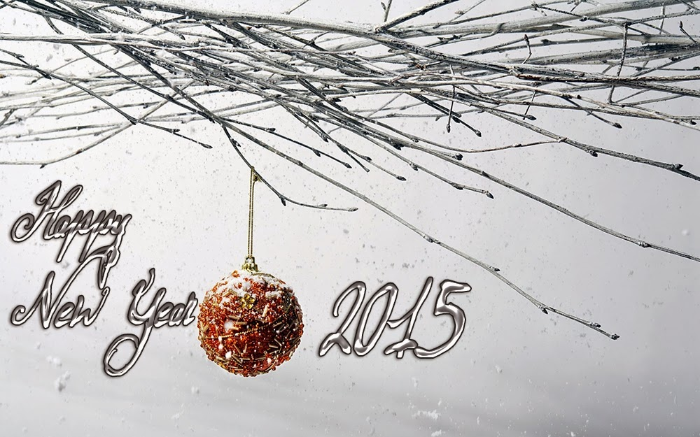 Happy New Year Wishes Cards 2015 Christmas Ice Snow Images