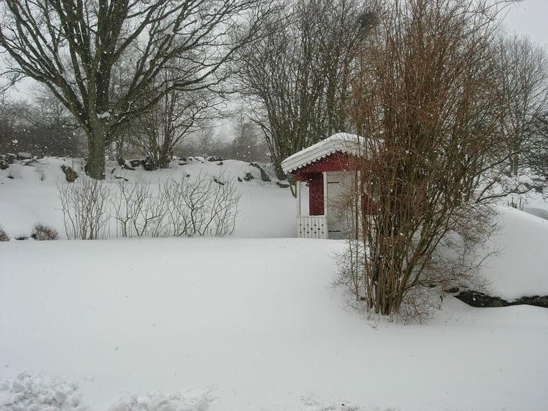 Il giardino in inverno