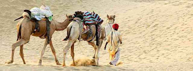 Sand Dunes of Rajasthan India image,picture,photo