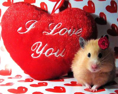 Linda ratoncita coqueta y enamorada