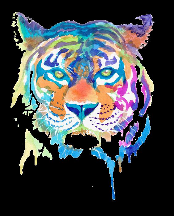 SPLASH LION