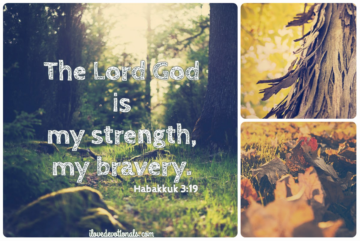 The Lord God is my bravery habakkuk 3:19