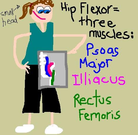 hip flexors gripping