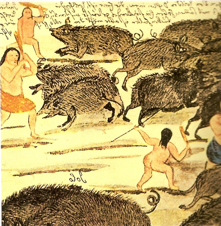 Historia del Chaco PUEBLOS ORIGINARIOS DEL CHACO PARTE III