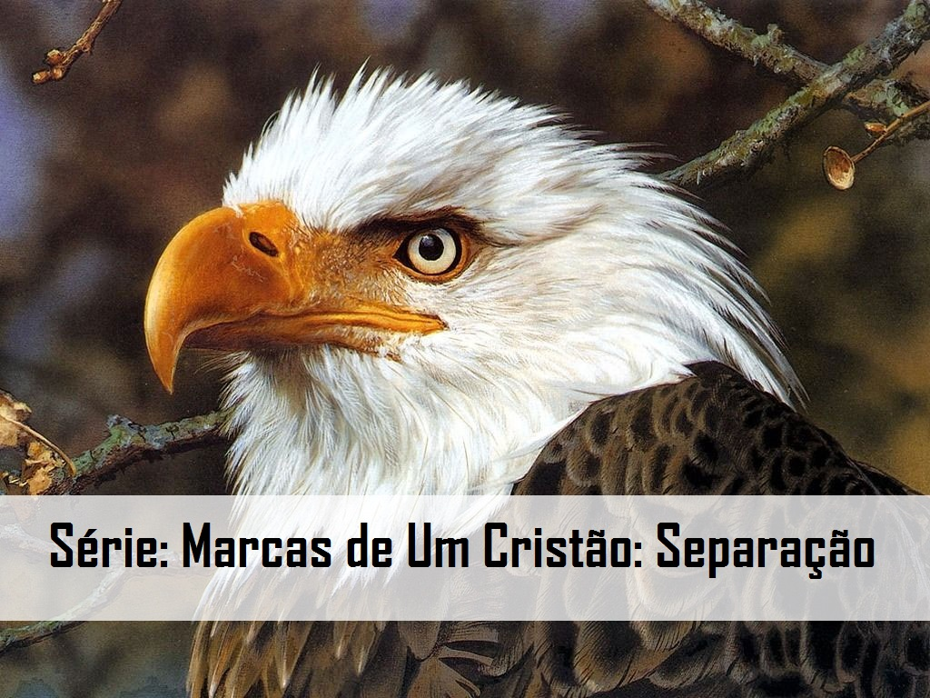Série: Marcas de Um Cristão: Separação