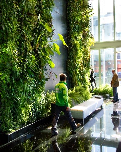 jardim vertical absolut:Sustenta-te: Jardinagem alternativa – os jardins verticais
