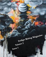 IRM Volume 1, Issue 24