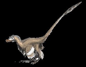 Representação de Velociraptor com Penas