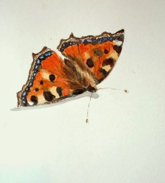 Small tortoiseshell butterfly watercolour