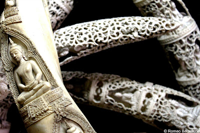Carved Elephant Tusks